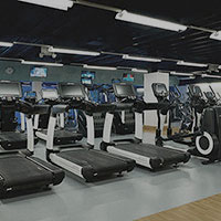 A row of treadmills in the Harbour Club gym.
